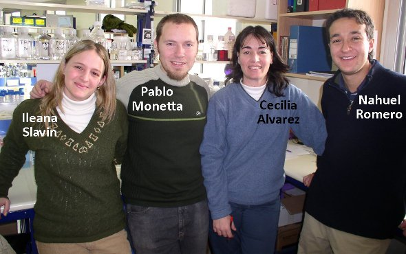 ex Work team