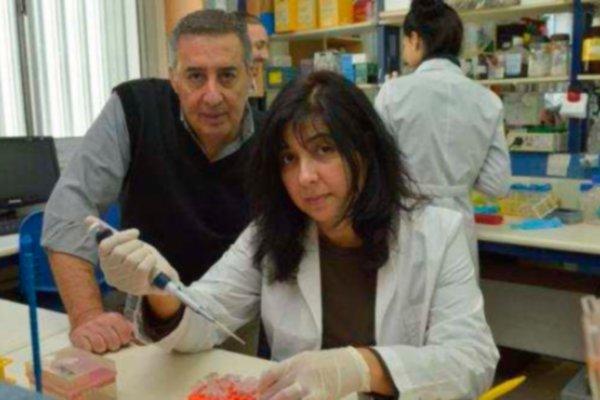 Mecanismos de oncogénesis y supresión tumoral